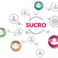 Sucro – projektowanie stron za pomocą KQS.
